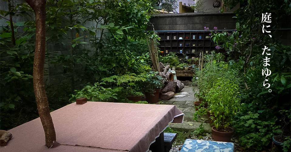 庭に、たまゆら。